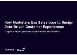 How Marketers Use Salesforce to Design Data Driven Customer Experiences Bluewolf and Marketo
