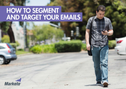 segment and target image