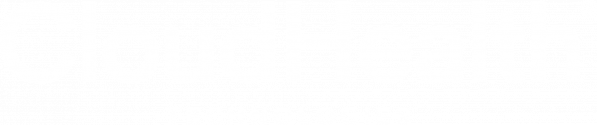 CLoudHealth logo white
