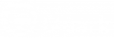 quark software white logo